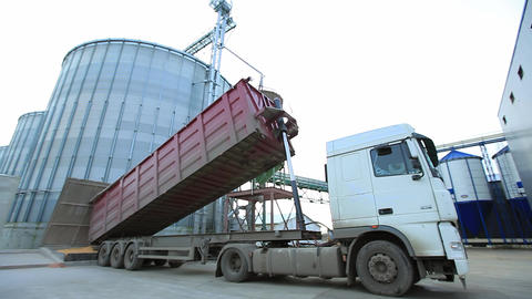 Truck Unloading Grain into Elevator Footage