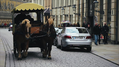 Horse transport in Dresden Germany Footage