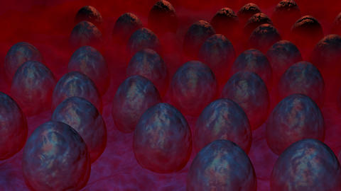 Alien eggs hatching Animation
