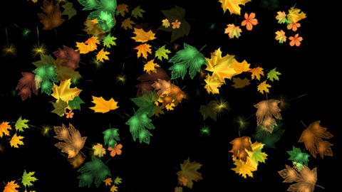 LEAVES FALL Animation