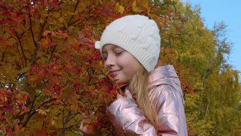 Portrait young girl on background red and orange autumn foliage on tree in park Footage