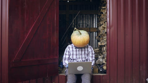 Successful freelancer with pumpkin on head Footage