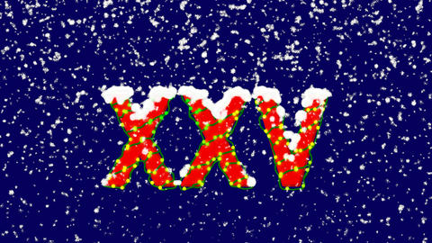 New Year text Roman numerals XXV. Snow falls. Christmas mood, looped video. Animation