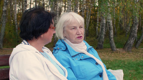 Two senior woman sitting on bench and talking in autumn park Footage