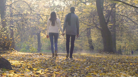 University students enjoying a walk in park after classes, romantic relationship Live Action
