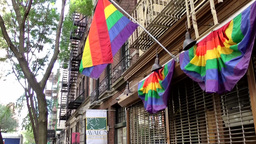 New York City 734 closed pub with rainbow flags over entrance Footage