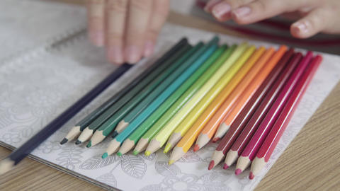 Timelapse of colored pencils that appears one by one, on... Stock Video Footage