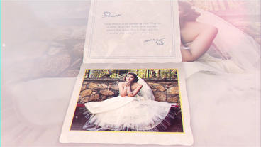 The Wedding After Effects Template