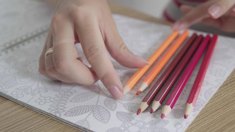 Timelapse of colored pencils that appears one by one, on white paper background Footage