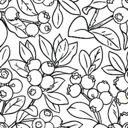 blueberry vector pattern Vector
