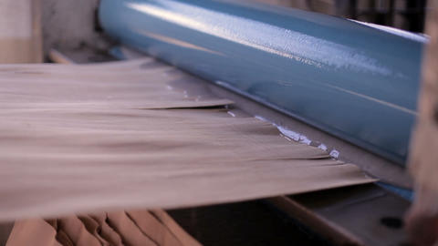 Furniture factory. Production of plywood Footage