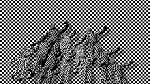 Checkered composition with Black end Red checkered people Animation