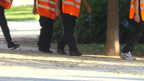 Staff Workers Legs Walking By Footage