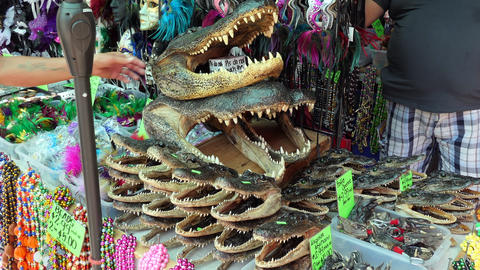 Stall With Alligator Heads At French Market In New Orleans Footage