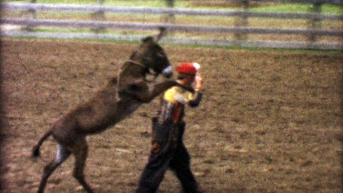 1955: Rodeo comedy clown carrying lazy donkey on shoulders trick Footage