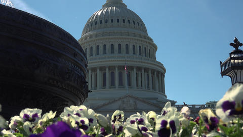 WASHINGTON, DC, USA, The U S Capitol,often called the... Stock Video Footage