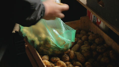 Hands of woman putting potato in plastic bag, local market outside, organic food Footage