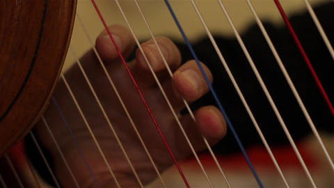 Male Hand Playing Harp String GIF
