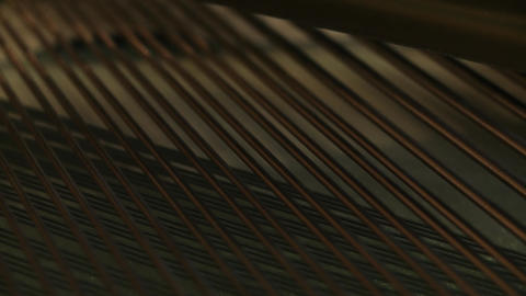 Vibrating Piano Strings. Close-Up GIF