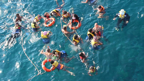 People diving in sea with masks and life jackets Footage