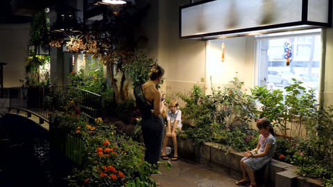 Audubon Butterfly Garden And Insectarium New Orleans With Family Children GIF