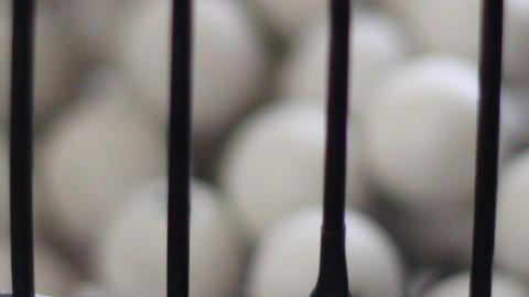 White bingo balls rolling inside black bingo cage Footage