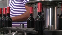 wine bottles in the bottling line conveyor belt Footage