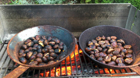 Chestnuts roasted on open fire Live Action