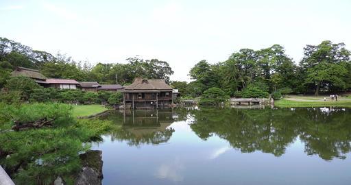 Hikone castle ビデオ