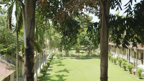 Green courtyard of the hotel in asia. Village in Chitwan national park, Nepal Footage