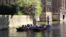 Punts on the River Cam Cambridge Cambridgeshire UK GIF