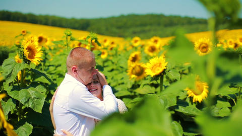 Happy couple running on sunflower field, taking hands and smiling Live Action