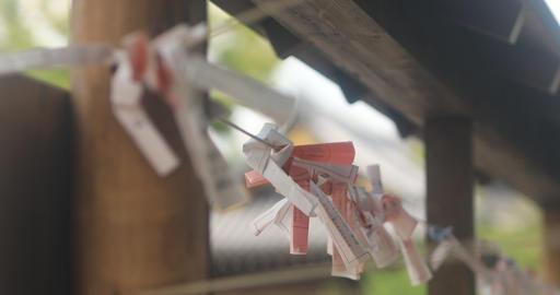 Oracle at Kameido shrine back rack focus Footage