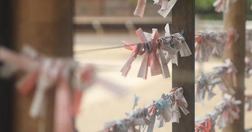 Oracle at Kameido shrine close up front rack focus ビデオ