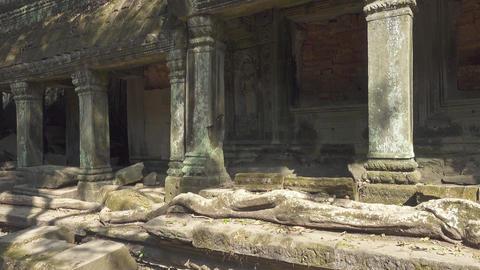 Ta Prohm temple in Angkor Wat, Siem Reap Footage