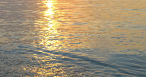 Quiet sea waves washing shore at sunset Live Action
