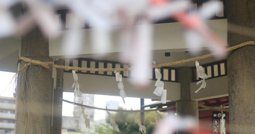 Oracles at Kameido shrine close shot back shallow focus Live Action