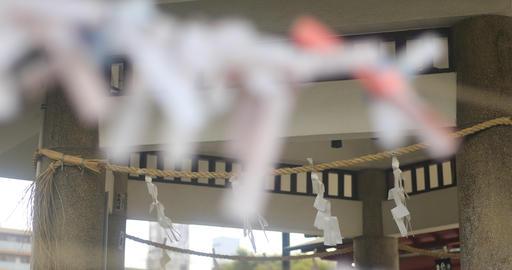 Oracles at Kameido shrine close shot back rack focus mild wind Live Action
