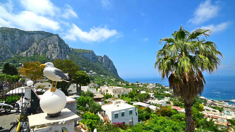 panoramic view of world famous Capri island Footage