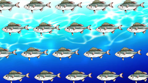 Fish back 2 GIF