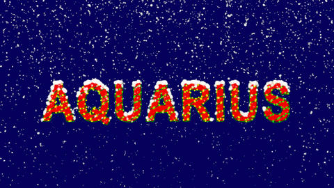 New Year text constellation of a AQUARIUS. Snow falls. Christmas mood, looped Animation