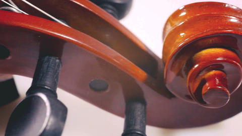 string music instruments and arts Footage