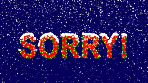 New Year text common expression SORRY!. Snow falls. Christmas mood, looped Animation