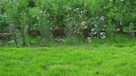 Blow soap rainbow bubble Footage