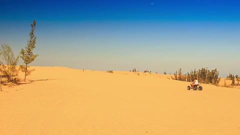 White Sand Dunes Rare Plants Distant Quad Runs up Live Action