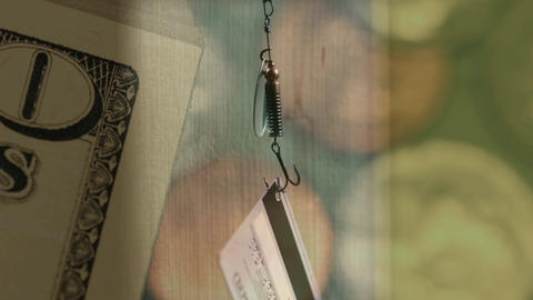 Phishing Credit Card On The Hook stock footage