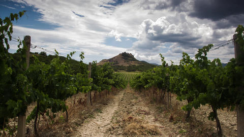 Cloudy timelapse over the mountain and vineyard at summer day Warm weather Live Action