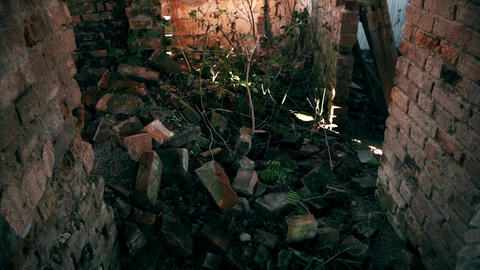 The Old Demolished House Interior ビデオ