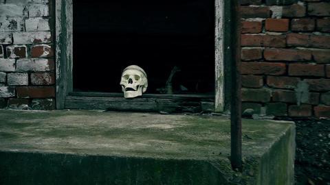 Fake Skeleton Head in the Doorway. In front of the Crime scene Archivo