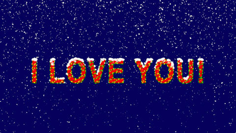 New Year text common expression I LOVE YOU!. Snow falls. Christmas mood, looped Animation